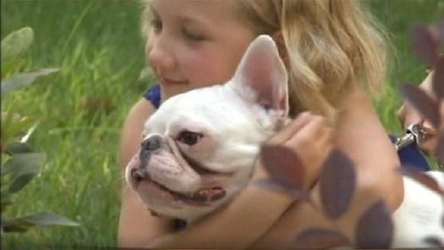 Atlanta Police prevent dognapping