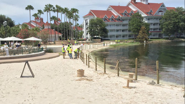 Fence going up at Disney resort beach where alligator killed toddler