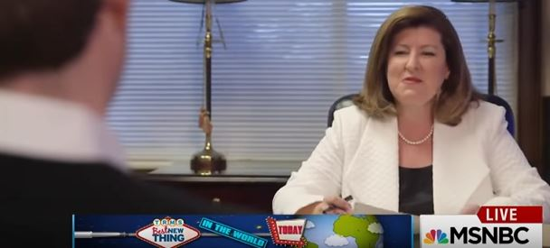 Karen Handel in 'b-roll' slip-up: 'I wanted to bark at you the way I get barked at'