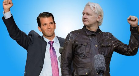WikiLeaks Set Off an Attack on Our Trump-Russia Project—Right After Messaging Donald Trump Jr. About It