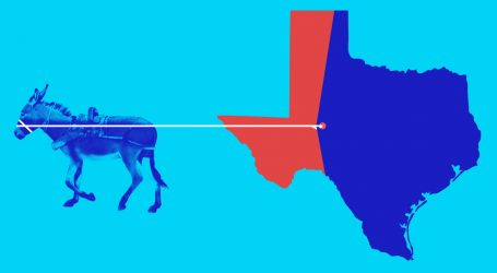 Democrats' Hopes of Taking Back the House Could Hinge on Two Districts—in Texas