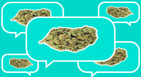 A Quick Guide to Legal Pot in California