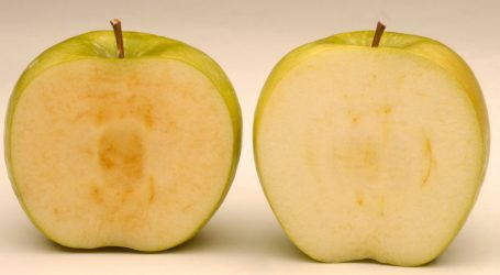 "Shhhh. The ""Gene Silenced"" Apple Is Coming."