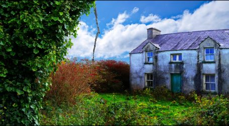 A Gallery of Weatherbeaten Houses