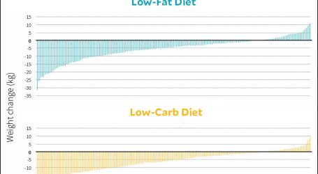 Low-Fat vs. Low-Carb: A New Study Puts Them to the Test
