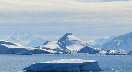 Why Antarctica's Prehistoric Forests Might Foreshadow Its Future