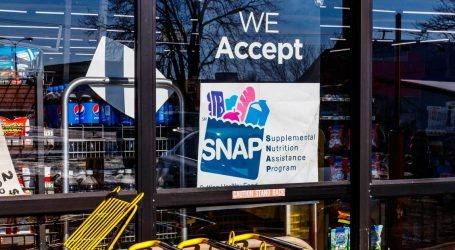 House Republicans Propose Strict Work Requirements for Food Stamp Recipients