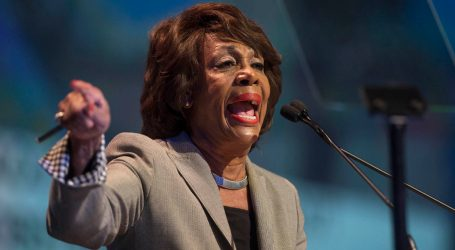 Maxine Waters Just Tore Up Trump's Threats in a Fiery Speech at the LA Immigration Rally