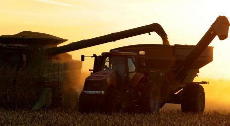 As Trump's China Tariffs Kick In, US Farmers Watch Prices Slide