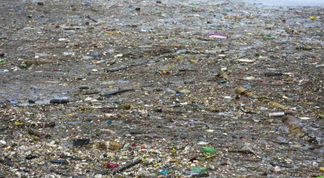 Microplastics Are Invisible, Scary, and Everywhere