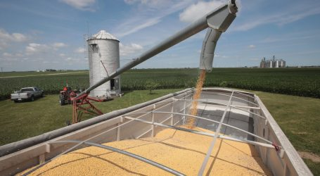 Trump's EU Deal Won't Do a Thing to Help Soybean Farmers