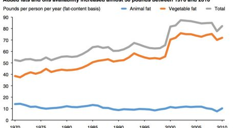Why Did We All Start Eating More Vegetable Oil When George Bush Was Elected President?