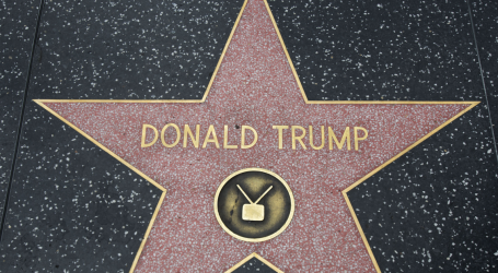 Trump's Hollywood Star of Fame One Step Closer to Removal