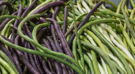 Delicious Purple Beans Connected One Chef to Her Family's Culinary Past