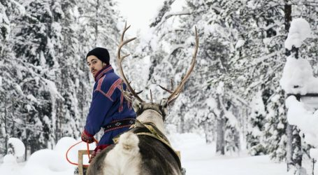 We Have Extremely Sad News About Sweden's Reindeer