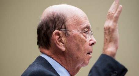 The Trial Over Trump's Census Citizenship Question Did Not Go Well for the Administration