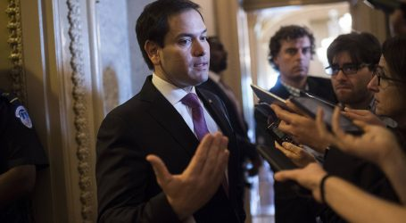 Marco Rubio Has Some Fresh New Ideas For Us
