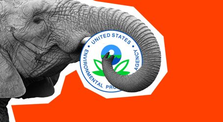 The Real Story Behind the EPA's Efforts to Hire a Hyper-Aggressive Political Operation