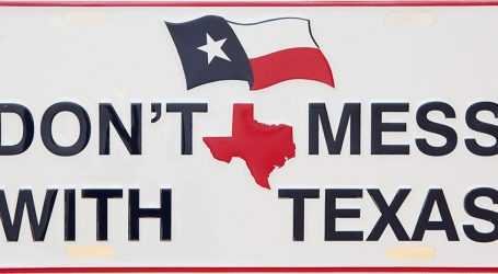 Texas Is Looking for Fraudulent Immigrant Voters