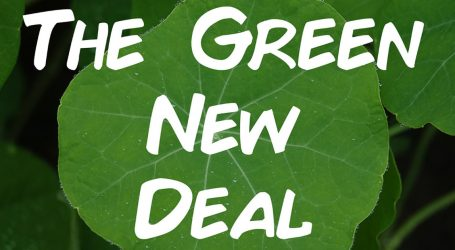 The Green New Deal Is Out—But It's Still Kind of Hazy