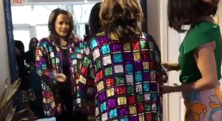 Kamala Harris and the Coat of Many Colors
