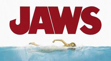 """Why """"Jaws"""" Was So Terrifying, According to the Guy Who Co-Wrote It"""