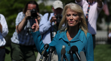 """What's Your Ethnicity?"" Kellyanne Conway Defends Trump With Shocking Question to Reporter"