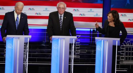 How Much Does Age Affect the Democratic Candidates' Policies?