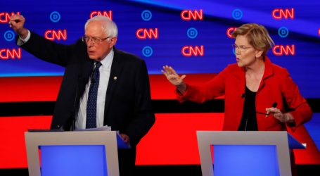 Elizabeth Warren Summed Up the Democratic Debate in 9 Seconds