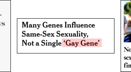There's No Gay Gene. In Fact, There's No Anything Gene.