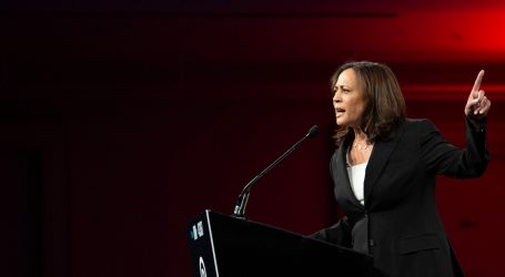 Kamala Harris Gets a D- For Her Climate Plan