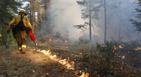 California's Wildfire Policy Totally Backfired. Native Communities Know How to Fix It.