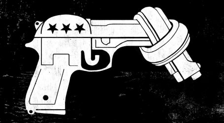 Disarming the NRA: How Guns Flipped Virginia Blue