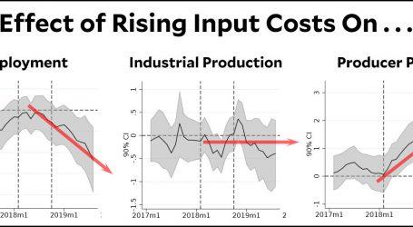 Trump's Tariffs Are Raising Prices and Slashing Employment