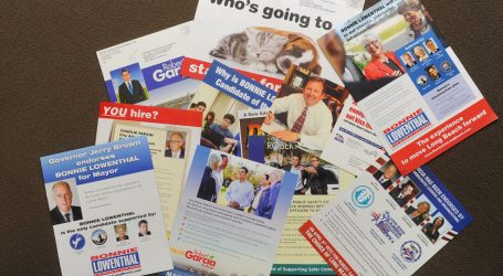 Hey, Voters, Send Us Your Political Mail!