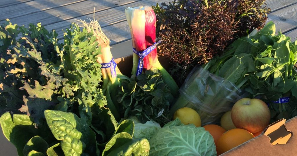 as-csa-orders-surge,-a-farm-owner-reflects-on-loss-and-renewal-in-rural-california