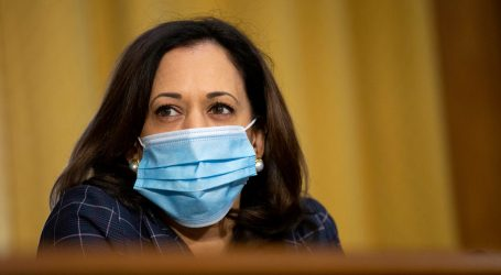 Biden's Vice Presidential Search Is Surfacing Sexist Tropes About Ambitious Women. Kamala Harris Could Be the Victim.