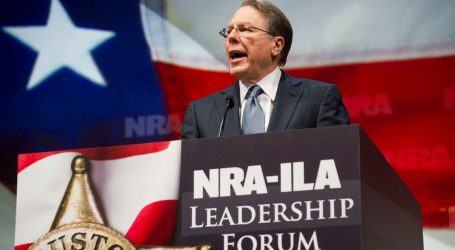 New York Attorney General Sues to Dissolve the NRA