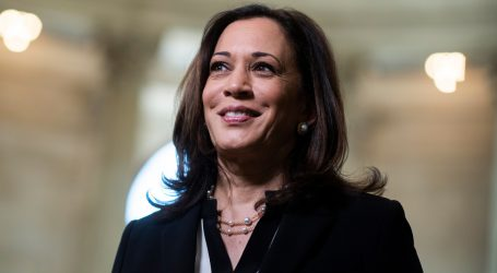 Joe Biden Just Made History and Picked Kamala Harris as His VP Candidate