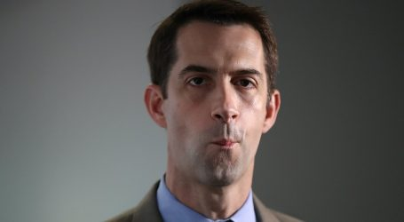 Tom Cotton Went on Fox News to Make the Case for a Quick Supreme Court Nomination. It Went Poorly.