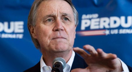 Georgia Senator David Perdue Privately Pushed for a Tax Break for Rich Sports Team Owners