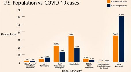Two Theories Explain COVID-19 Racial Disparities. Which Is Right?