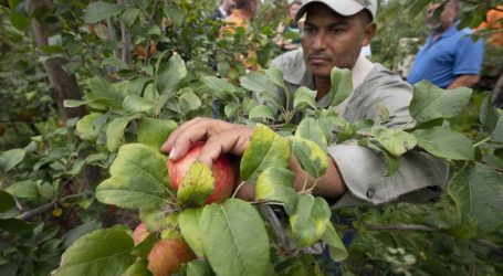 Guest Farm Workers Died of COVID in Obscurity While Trump Planned to Freeze Their Wages