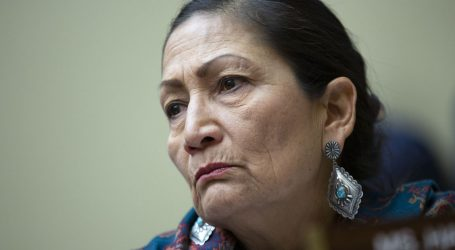 """""""I'll Be Fierce for All of Us"""": Deb Haaland on Climate, Native Rights and Joe Biden"""