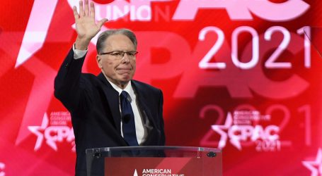 NRA Chief LaPierre Hunted Elephants in Botswana, Video Shows