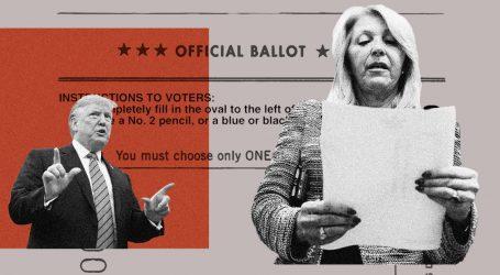 What Happens When Local Election Administrators Believe Trump's Big Lie?
